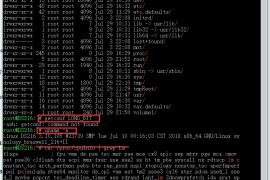 如何判断群晖CPU和系统是32位还是64位