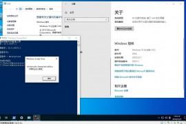 Windows 10 企业版 LTSC 2004 19037.1 简体中文RTM版官方资源