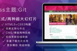 Git12.3主题,一款比付费主题更像是付费主题的WordPress免费主题