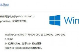 Windows 10 神州网信政府版V2020-L技术支持快速指南